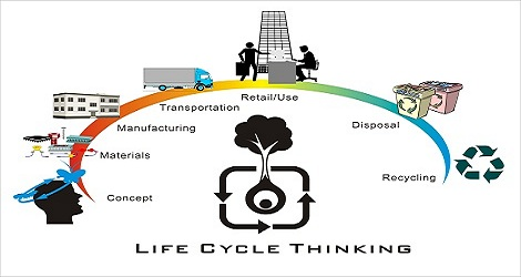 Product Life Cycle Worksheet